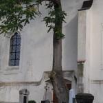 025g okna kostela