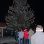 029š Rozsvícení stromu