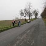 Sázení stromků 2013